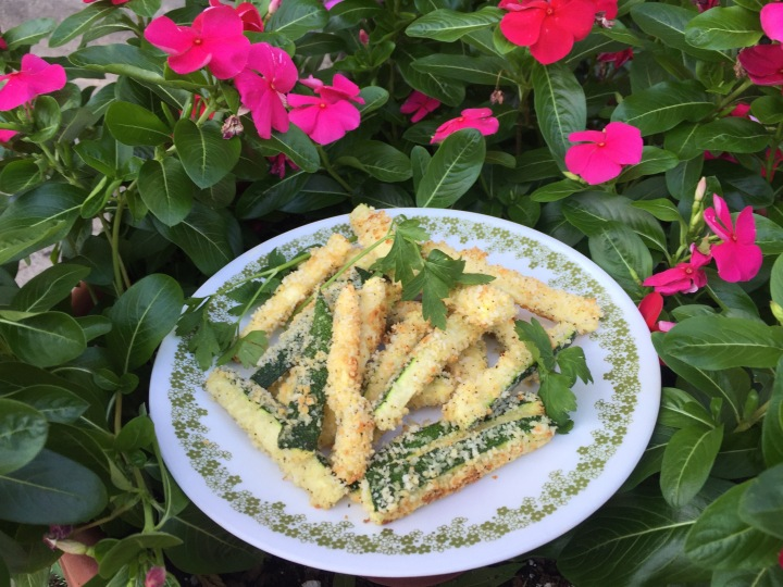Tuesday Treat: Parmesan Zucchini Fries