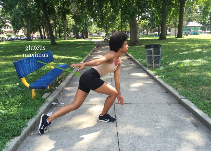 Muscle Monday: Gluteus Maximus